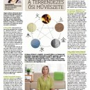 Magazin: Bors cikkek