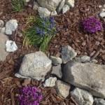Csináld magad: sziklakert készítése