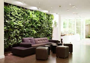 Applications-Park-Vertically-in-the-Interior-Wall-Make-a-Garden-in-the-Modern-Room[1]