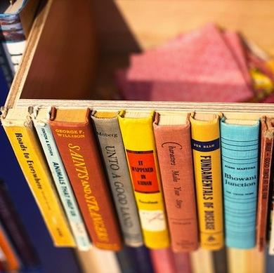 StorageBookBin
