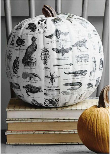 decoupaged-pumpkins-434x608
