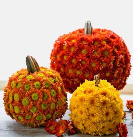 mum-covered-pumpkins-434x448